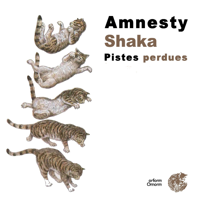 Pistes perdues | Amnesty - Shaka